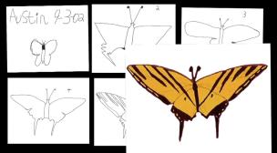 Ausitn's butterfly